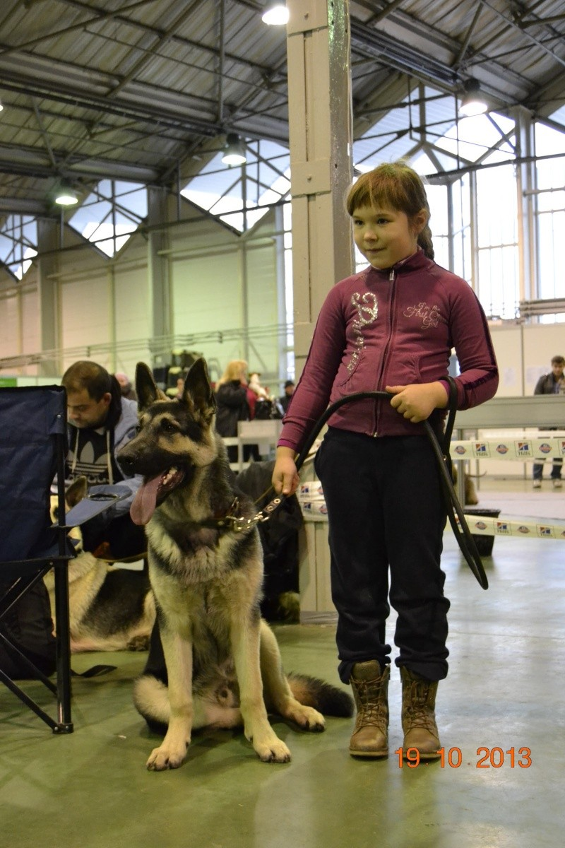 19.10.2013  IKU VIP DOG _dsc0212