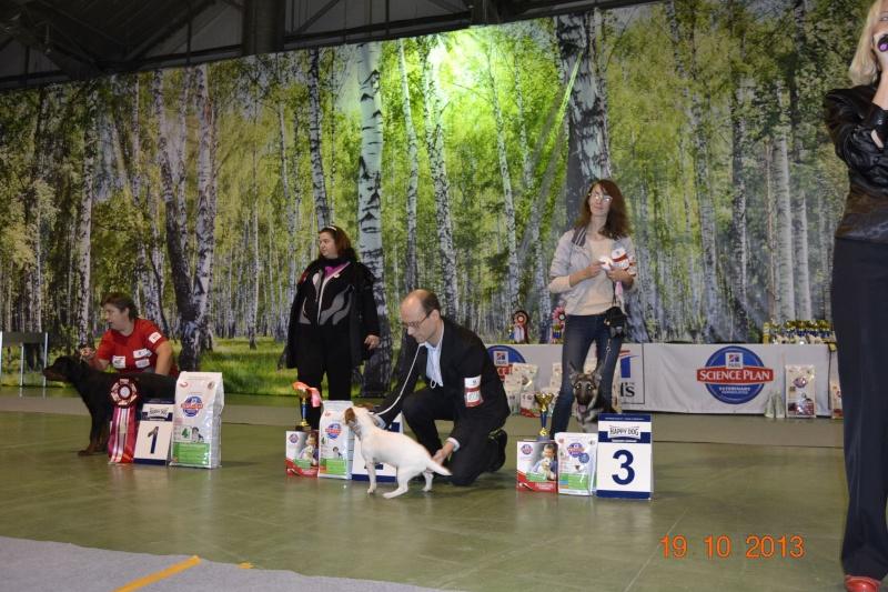 19.10.2013  IKU VIP DOG _dsc0418