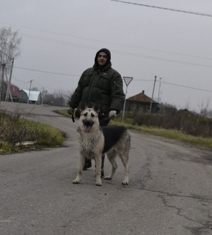 ВОСТОЧНО-ЕВРОПЕЙСКАЯ ОВЧАРКА ВЕОЛАР ВЭНДИ-ЛАР - Страница 3 _dsc1311