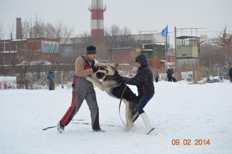 ЗКС ЗАЩИТНО КАРАУЛЬНАЯ СЛУЖБА Dsc_0130