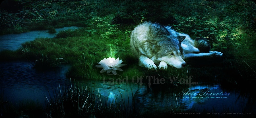 Land Of The Wolf RPG Landof10