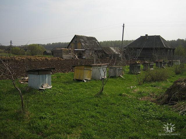 Матюшино Dodnnz11