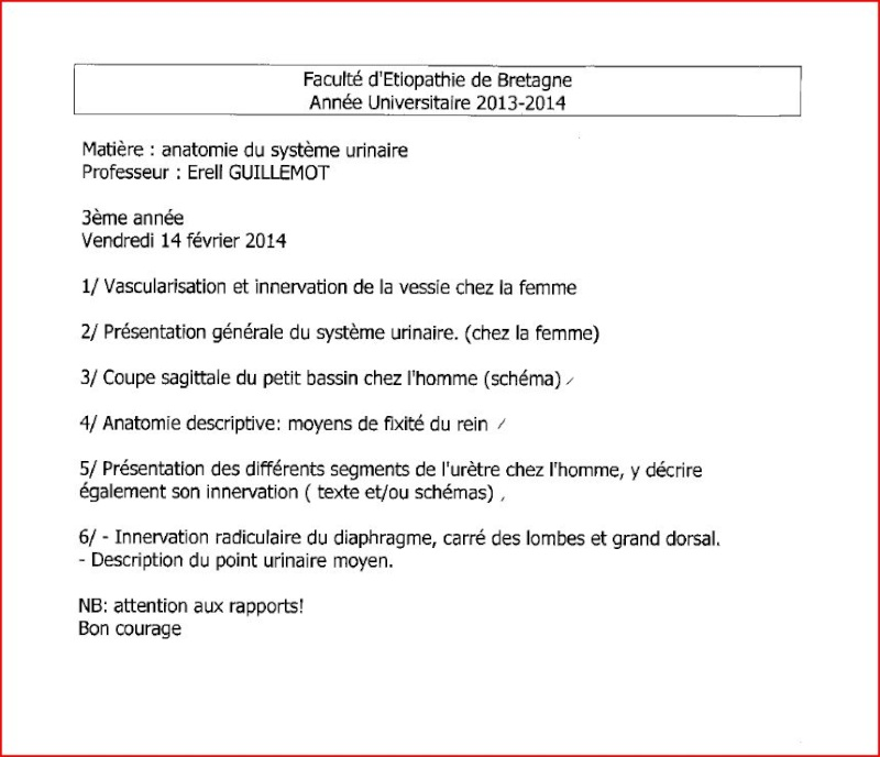 Rennes Anat_u10