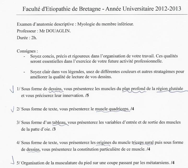 Rennes - 1ère année Captur11