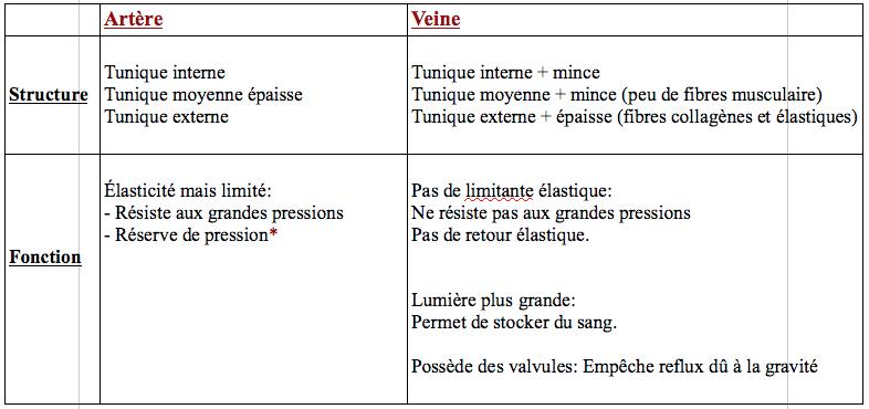 4/ Comparaison entre veines et artères (structure/fonction) Captur19