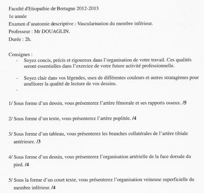 Rennes - 1ère année Captur21