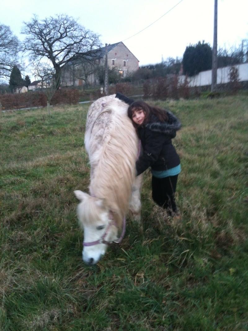 (Dpt 23) GENEREUX, poney ONC réservé par Sabnat23 !!!!!!!!!!!!!!!! (Nov 2011) Ganare12
