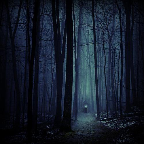 [Hujoo Berry] Linawen Nyx Altéor ~ Forest10