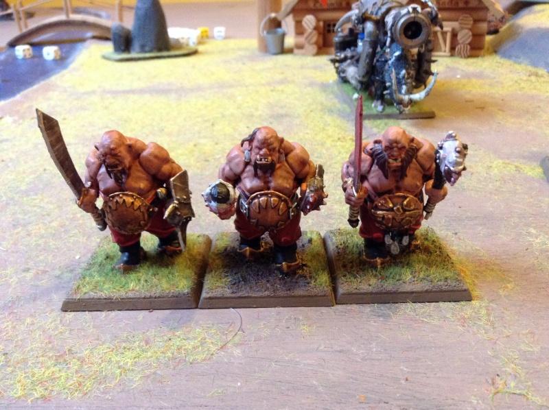 [Royaume Ogres] Nouveau fluff' ! Img_0418