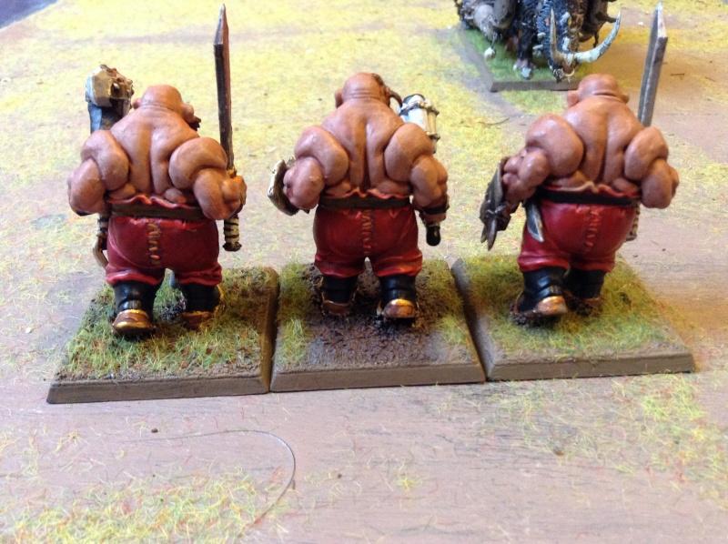[Royaume Ogres] Nouveau fluff' ! Img_0419