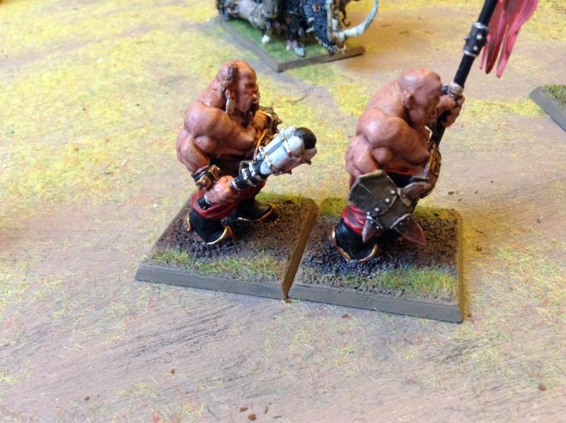 [Royaume Ogres] Nouveau fluff' ! Img_0420