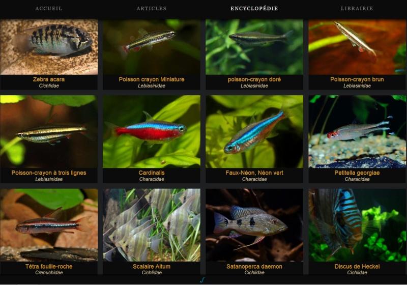 Fishipédia, nouvelle encyclopédie en ligne Encycl10