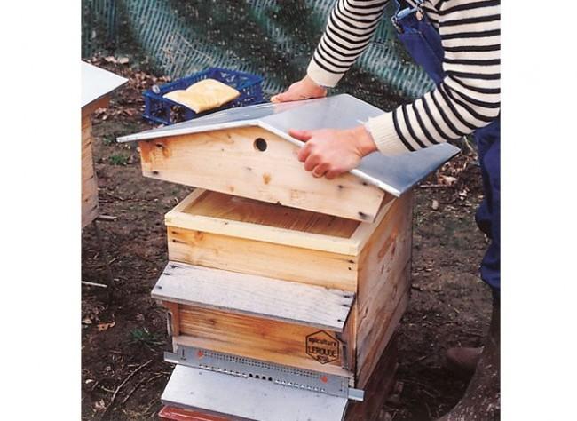 Apiculture ruche abeille miel Ruche210