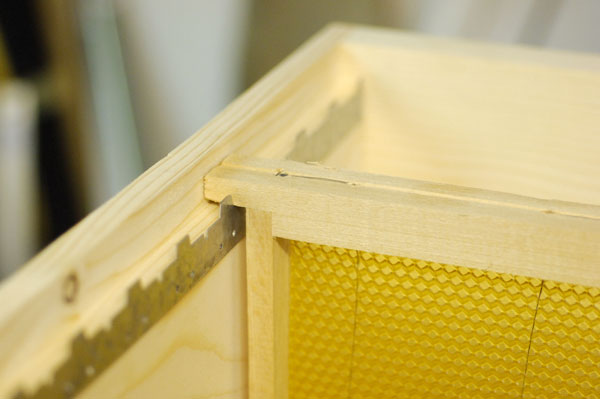 Apiculture ruche abeille miel Ruche910