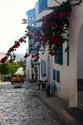 Voyage de Jacaranda en 2013: la Tunisie  -SIDI BOUSAID Sidi_b11