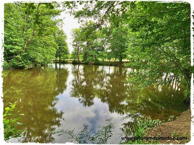 Parc de Majolan à Blanquefort vu par Forum du Médoc 10177311