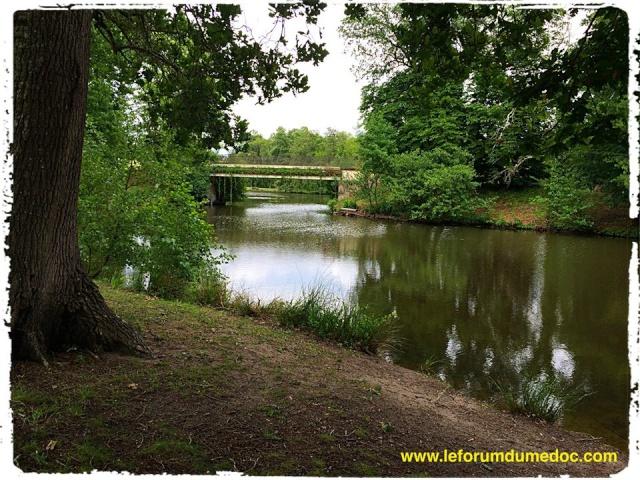 Parc de Majolan à Blanquefort vu par Forum du Médoc 10178113