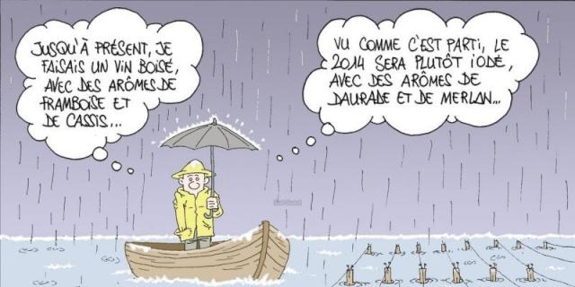 Les dessins humoristiques du Journal Sud Ouest sur l actualité du Médoc 14480710