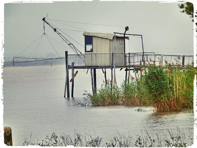 Photos de Bords de Garonne et de l'Estuaire de la Gironde par Forum du Médoc 15456210