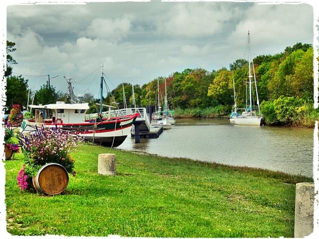 Photos de Bords de Garonne et de l'Estuaire de la Gironde par Forum du Médoc 15646_10