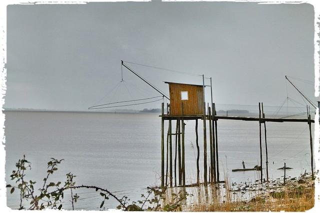 Photos de Bords de Garonne et de l'Estuaire de la Gironde par Forum du Médoc 16203711