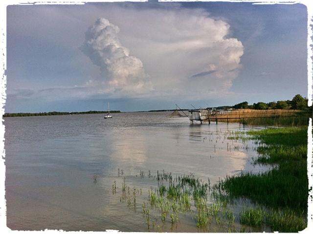 Photos de Bords de Garonne et de l'Estuaire de la Gironde par Forum du Médoc 16237410