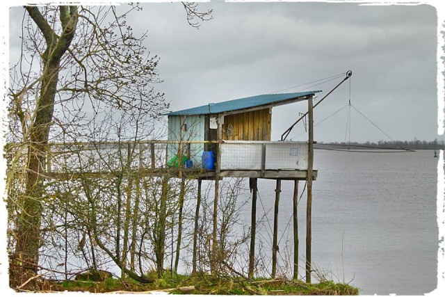 Photos de Bords de Garonne et de l'Estuaire de la Gironde par Forum du Médoc 16540810
