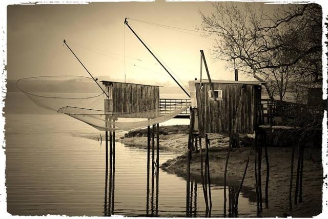 Photos de Bords de Garonne et de l'Estuaire de la Gironde par Forum du Médoc 19724010