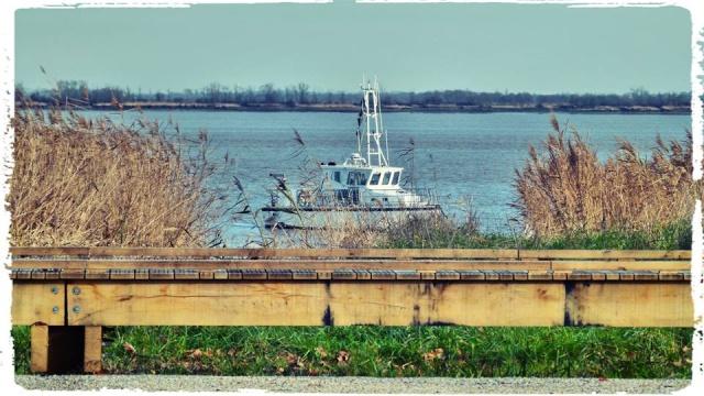 Photos de Bords de Garonne et de l'Estuaire de la Gironde par Forum du Médoc 77121_10