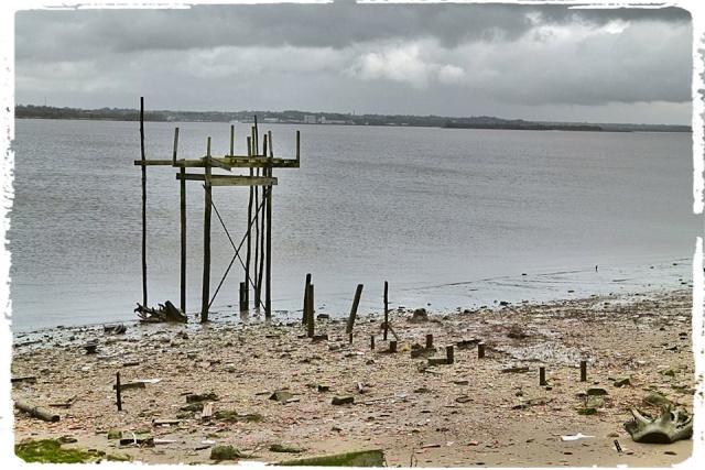 Photos de Bords de Garonne et de l'Estuaire de la Gironde par Forum du Médoc 99584310