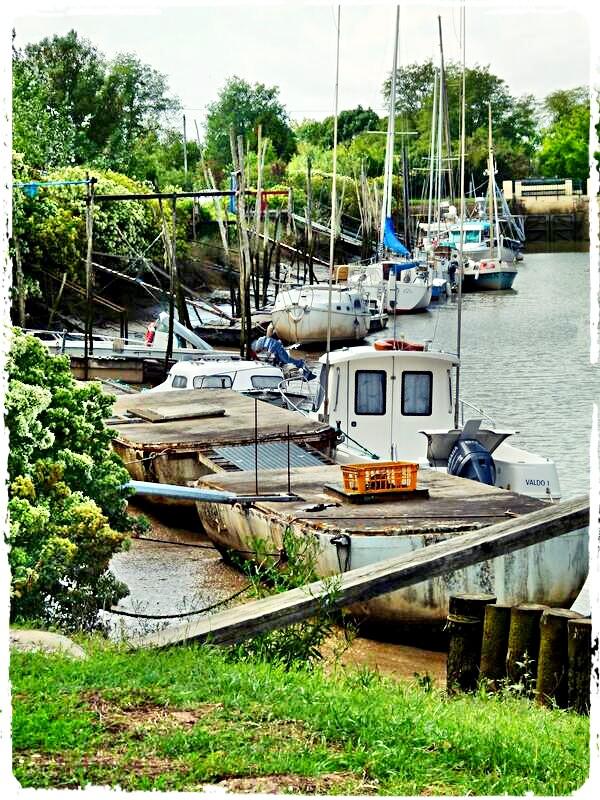 Photos de Bords de Garonne et de l'Estuaire de la Gironde par Forum du Médoc Bf5lqd10