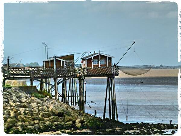 Photos de Bords de Garonne et de l'Estuaire de la Gironde par Forum du Médoc Bf5mqm10