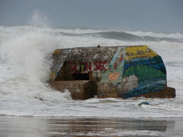 Naujac sur Mer et ses Blockhaus  Pinsec10