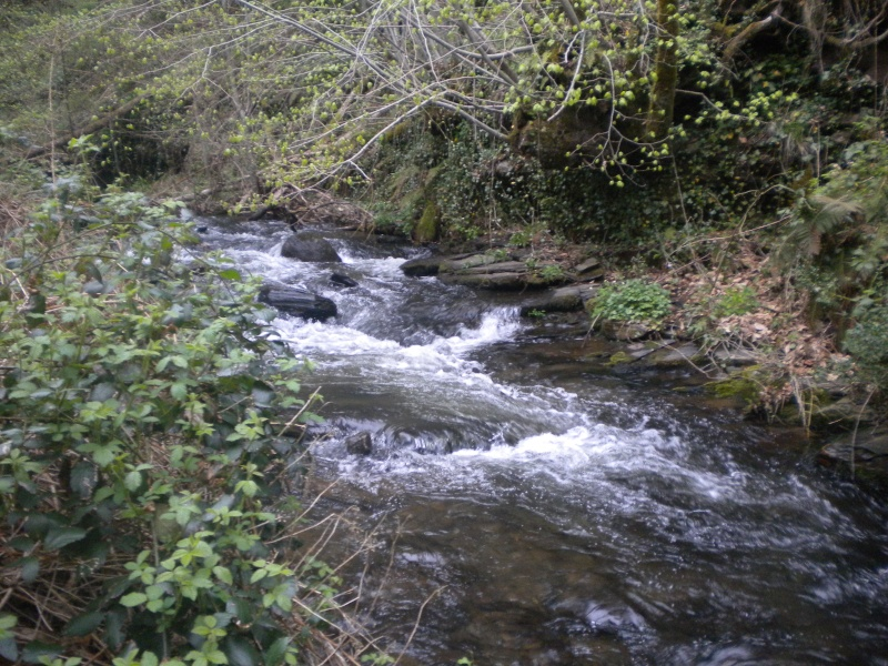 Votre pêche salmo d'Avril 00210