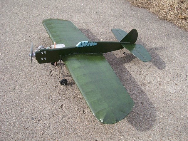 P-40 Kittyhawk Stunter 100_1511