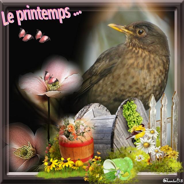 Printemps A1010