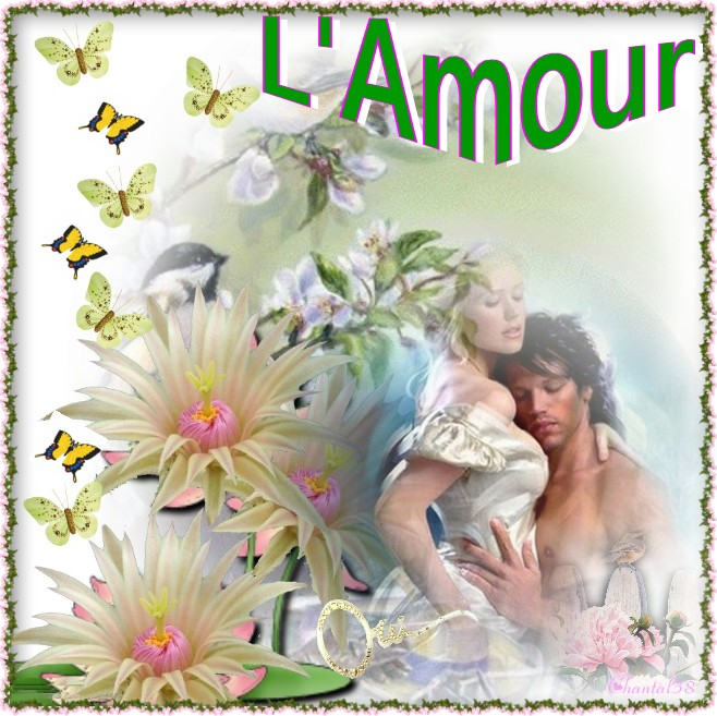 Amour A1110