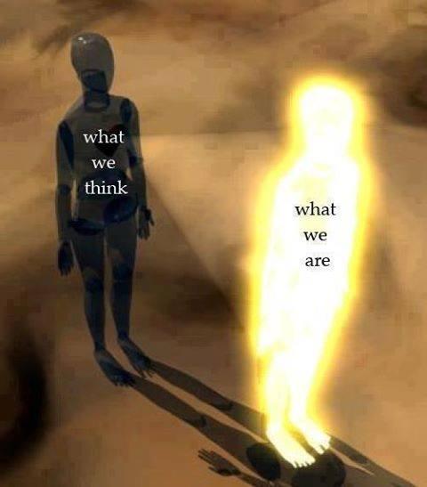 EVOLUTION ET VISUALISATION... - Page 5 14525210