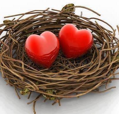 Hommages à l'amour (tous les supports sont requis) - Page 10 53152611