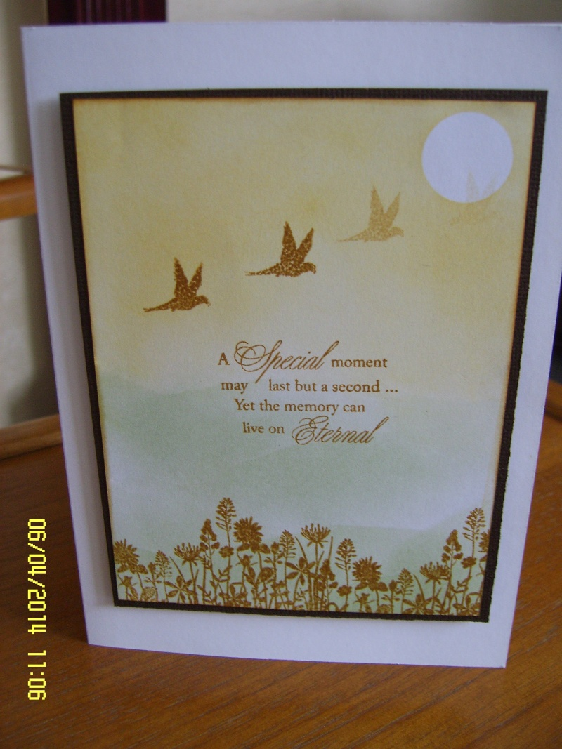 Card Using new stamps Sv101617