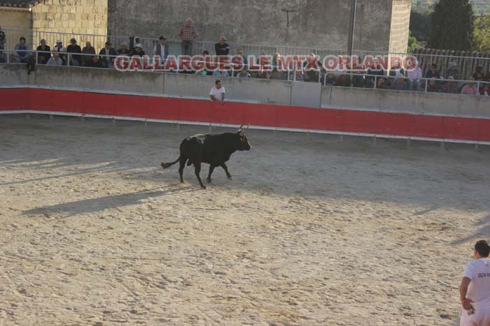 07..11..2013..GALLARGUES LE MTX Img_0911