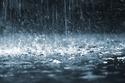 Cats are multi-dimensional creatures Rain_a13