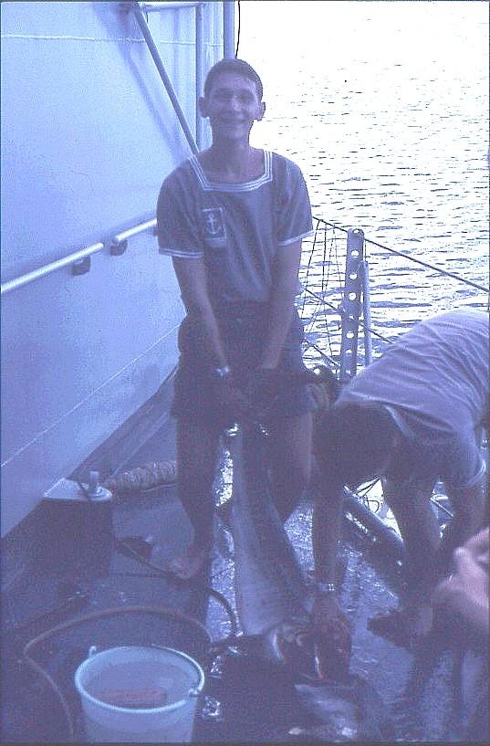 ENSEIGNE DE VAISSEAU HENRY (AE) Tome 1 - Page 20 Requin10