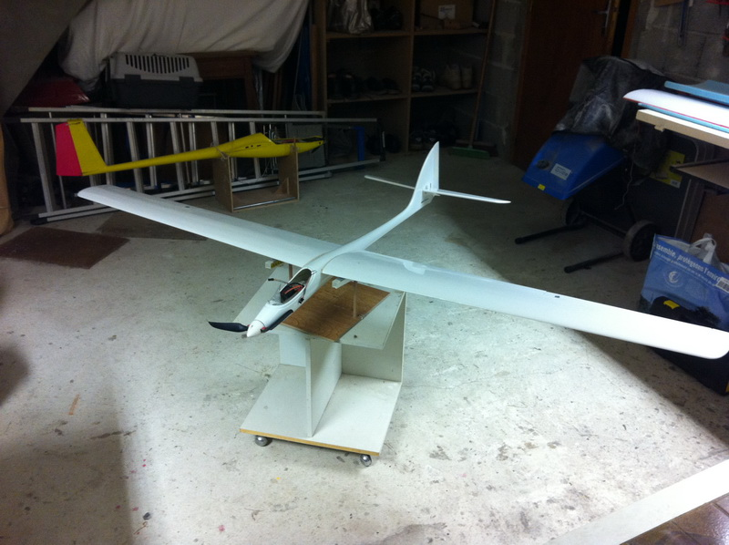 Falco 2 Img_0620