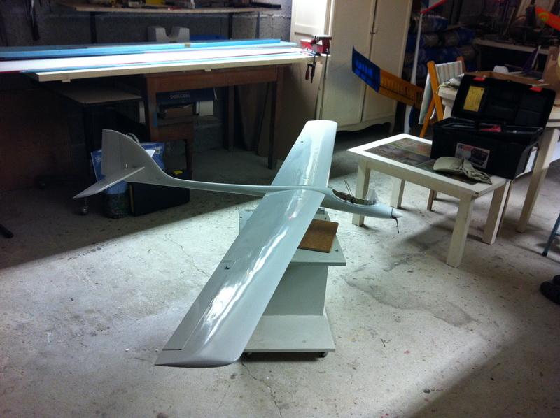 Falco 2 Img_0622