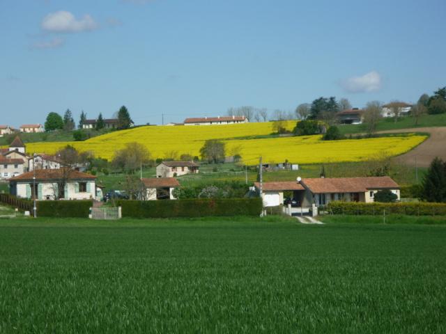 C.R Aubeterre sur Dronne en Charente Aubete13