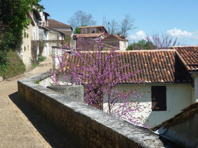 C.R Aubeterre sur Dronne en Charente Aubete20