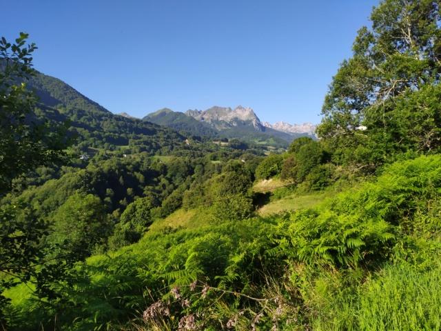 Road Trip dans les Pyrénées à Bedous Vallée Aspe Béarn… Img_2549