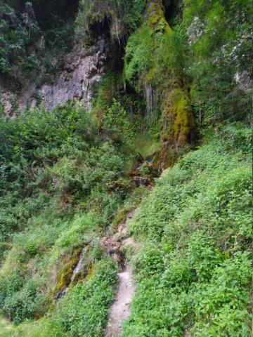 Road Trip dans les Pyrénées à Bedous Vallée Aspe Béarn… Img_2563
