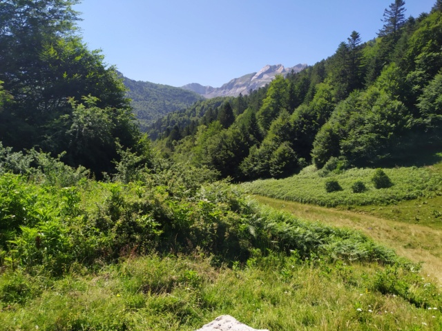Road Trip dans les Pyrénées à Bedous Vallée Aspe Béarn… Img_2575